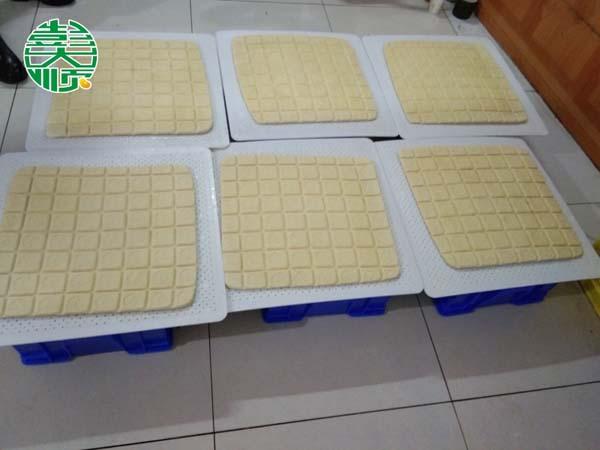 陕西商洛客户用彭乐天堂Fun88国际设备做出的豆制品产品